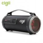 Бумбокс Cigii K1201 (Bluetooth, USB, micro SD, FM, AUX, Mic)