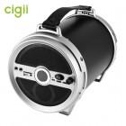 Бумбокс Cigii S28B (Bluetooth, USB, SD, FM, AUX, Mic)