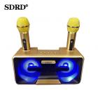 Беспроводная стерео караоке система SDRD SD-301 (USB/Bluetooth/TF, 2 микрофона)