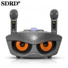 Беспроводная караоке стерео система SDRD SD-306 Plus (USB, Bluetooth, TF, 2 микрофона)