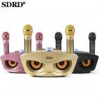 Беспроводная караоке стерео система SDRD SD-306 (USB, Bluetooth, TF, 2 микрофона)