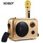Беспроводная караоке система SDRD SD-501 (USB/Bluetooth/TF, 1 микрофон)
