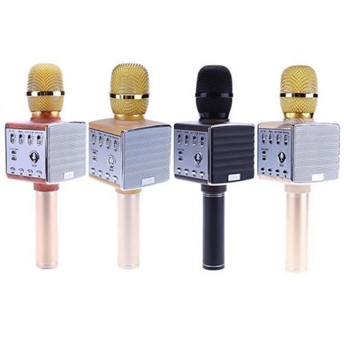 Портативный караоке микрофон с встроенными динамиками D8 (Bluetooth, MP3, AUX, KTV)