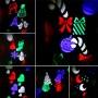 Декоративный влагостойкий уличный LED проектор LED 10 Pattern Projector RGBW