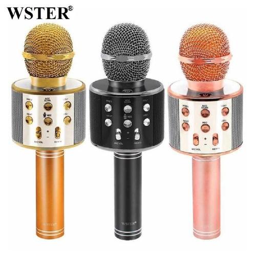 Колонка с функцией Караоке Микрофона Wster WS-858 (USB, microSD, AUX, Bluetooth)