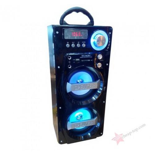 Беспроводная функциональная аудио система Wster WS-862 BT